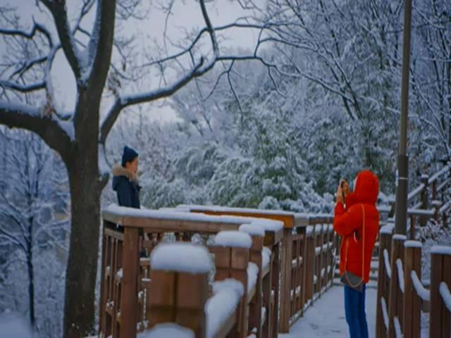 'Mild winter of JEONJU'